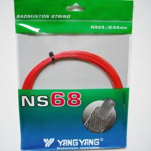 NS68 rood